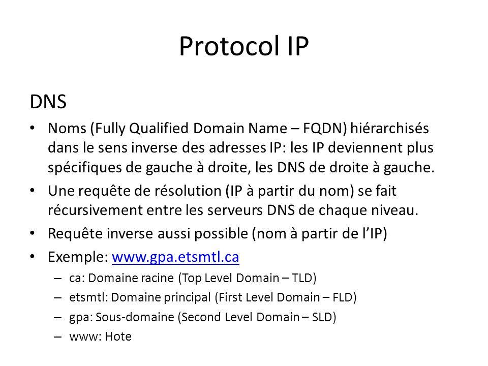 Protocol IP DNS.