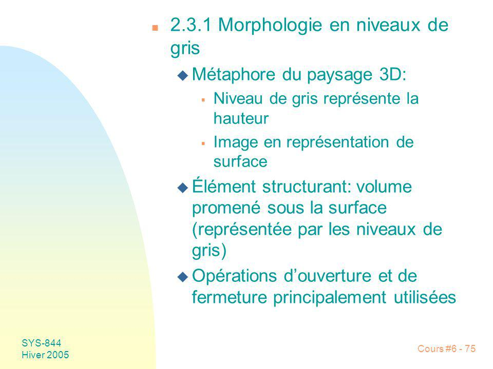 2.3.1 Morphologie en niveaux de gris