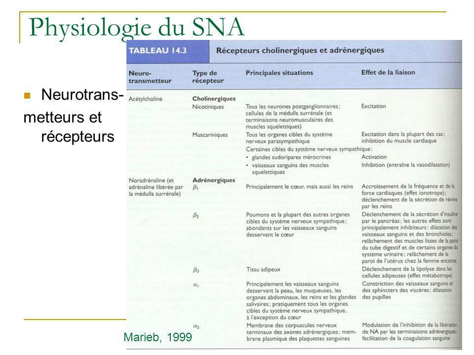 Physiologie du SNA Neurotrans- metteurs et récepteurs Marieb, 1999