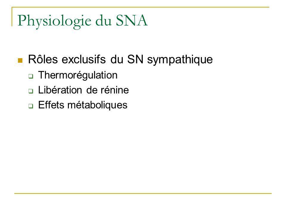 Physiologie du SNA Rôles exclusifs du SN sympathique Thermorégulation