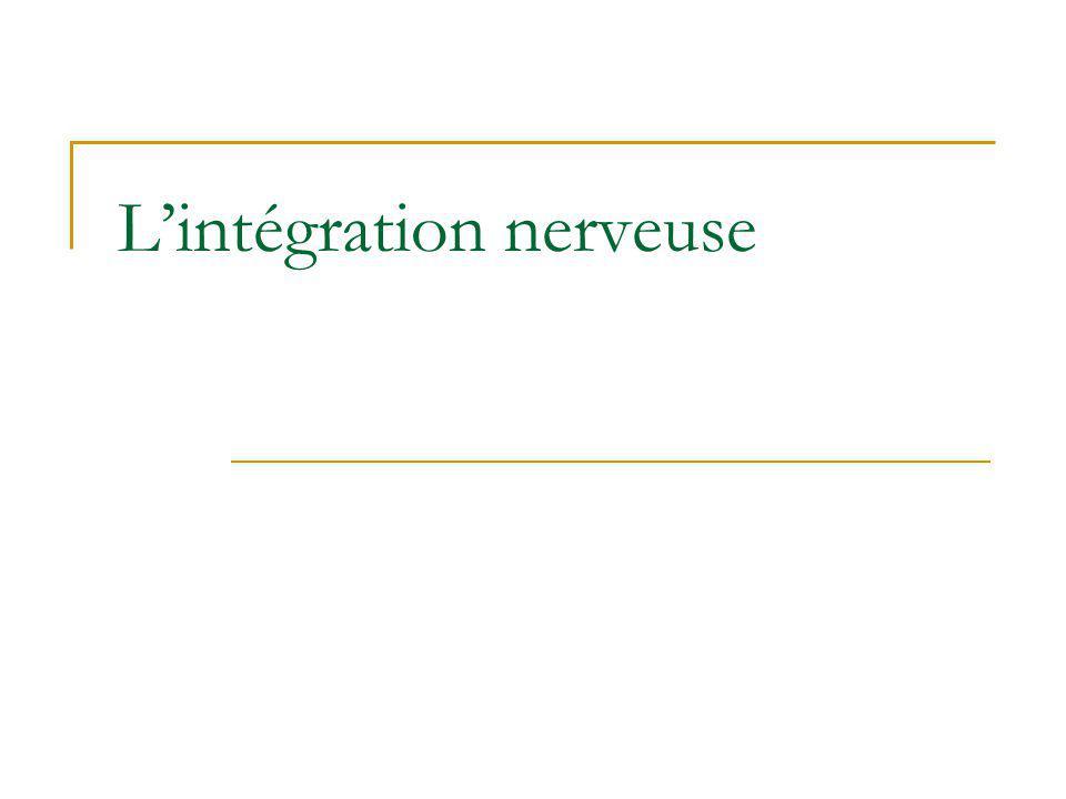 L'intégration nerveuse