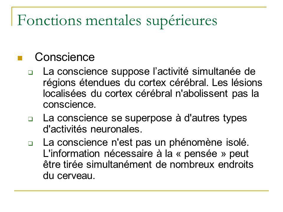 Fonctions mentales supérieures