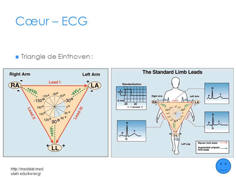 Cœur – ECG Triangle de Einthoven : http://medstat.med.utah.edu/kw/ecg/