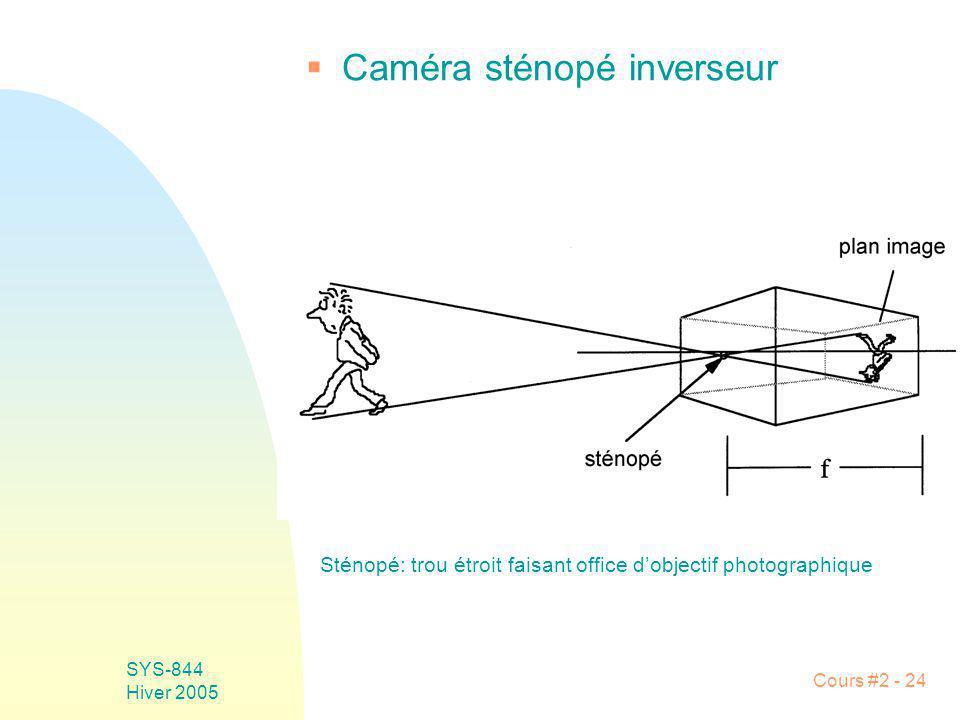 Caméra sténopé inverseur