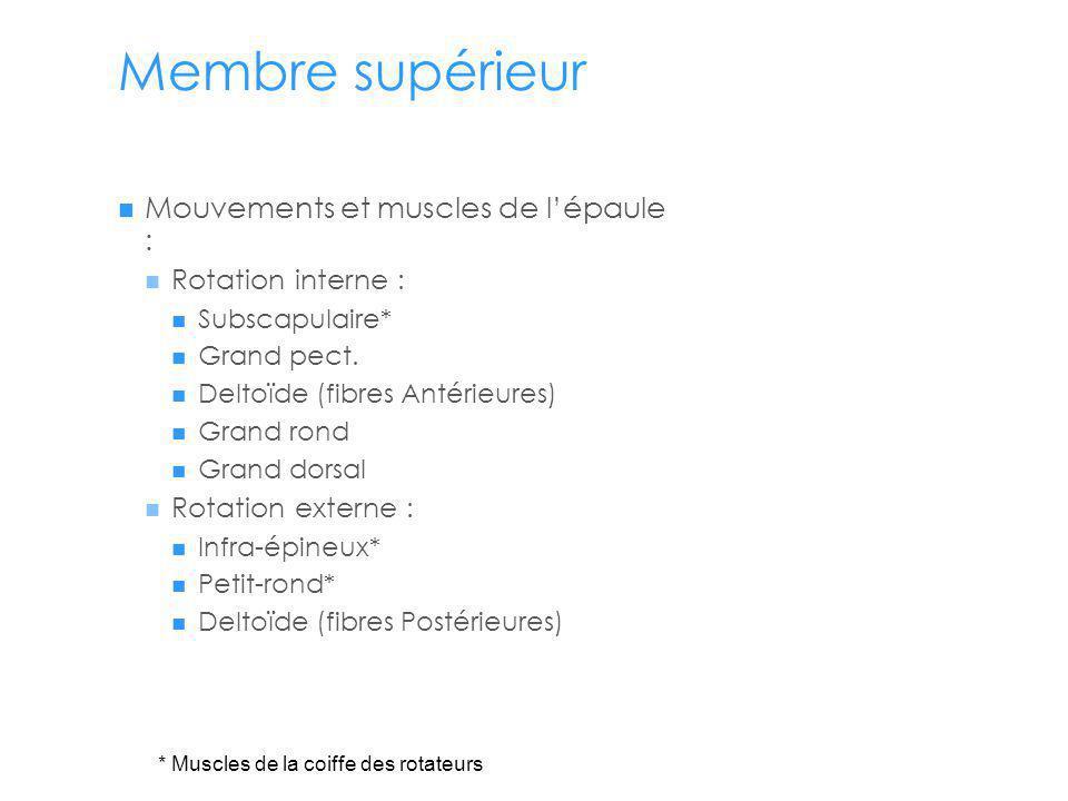 Membre supérieur Mouvements et muscles de l'épaule :