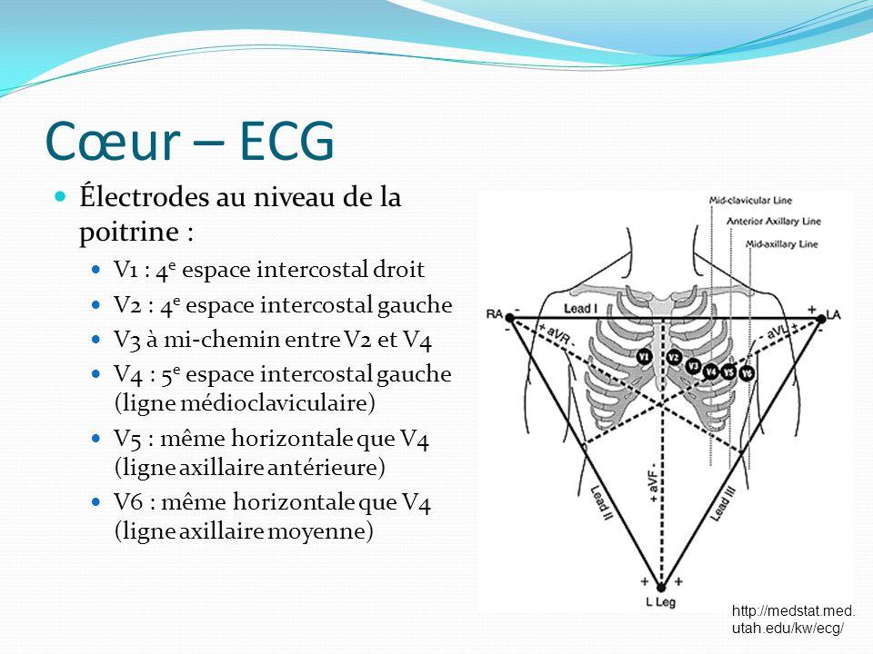 Cœur – ECG Électrodes au niveau de la poitrine :