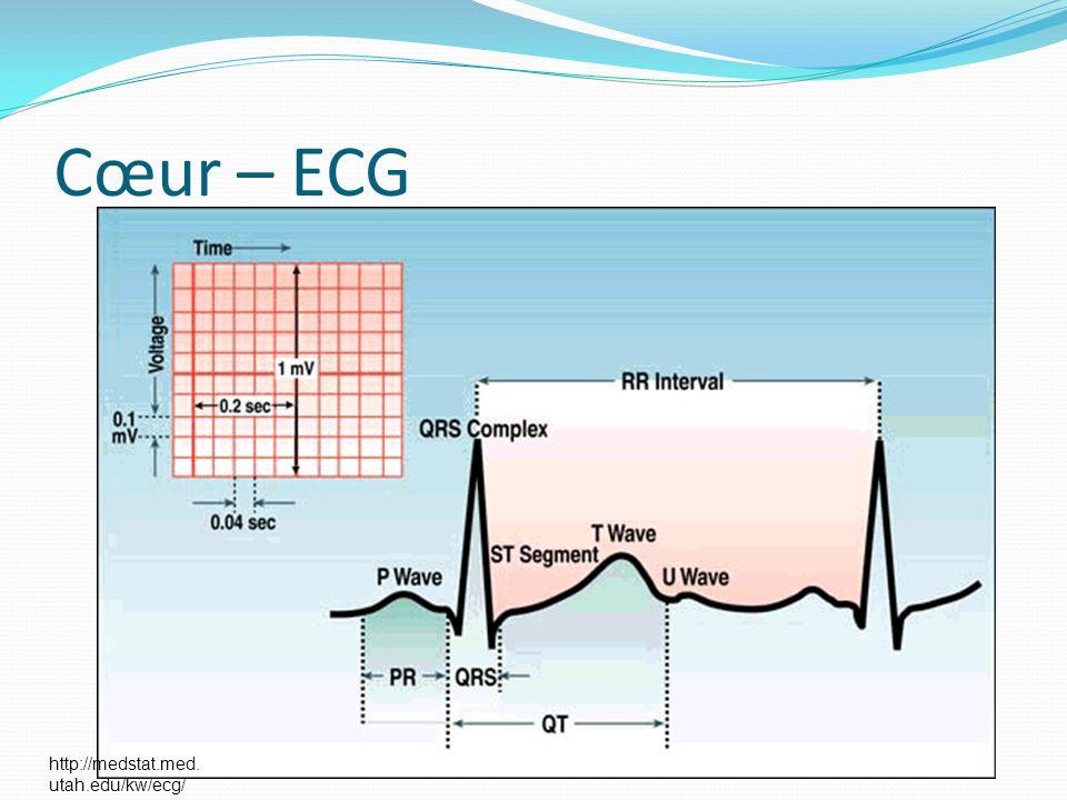 Cœur – ECG http://medstat.med.utah.edu/kw/ecg/