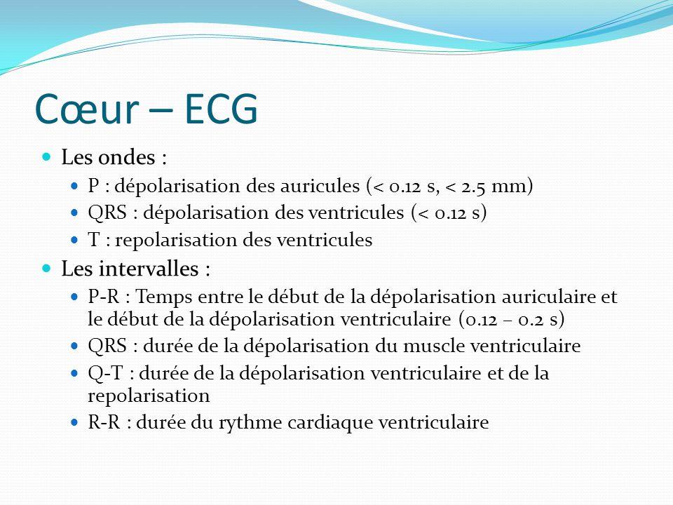 Cœur – ECG Les ondes : Les intervalles :