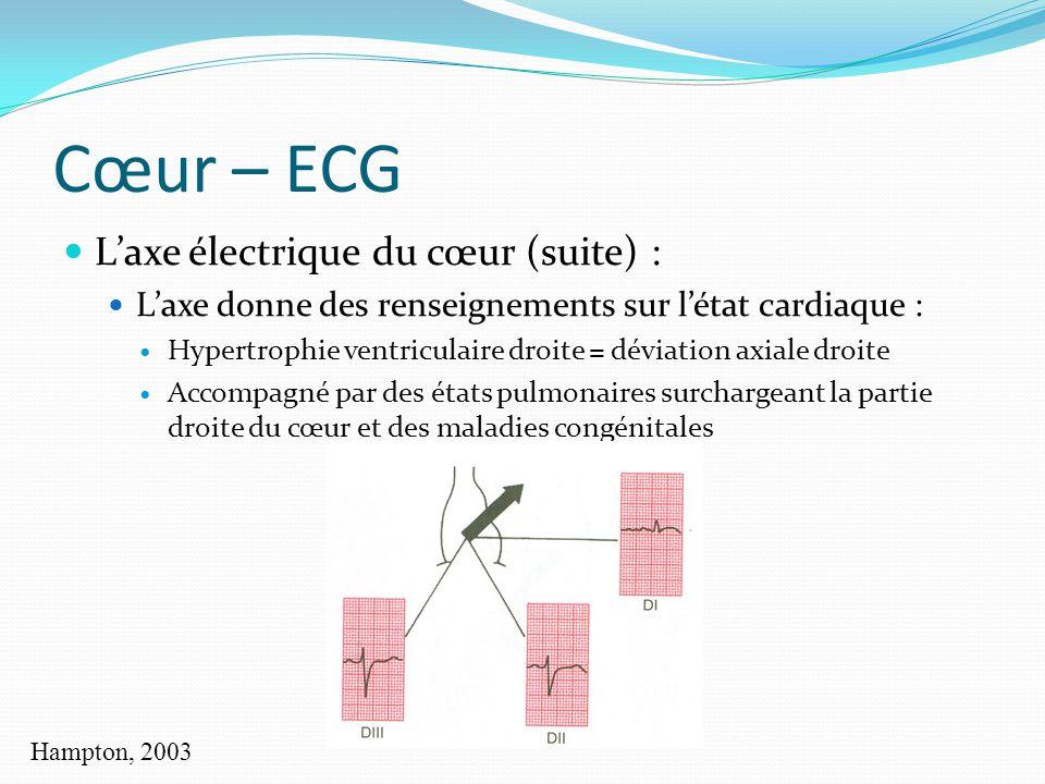 Cœur – ECG L'axe électrique du cœur (suite) :