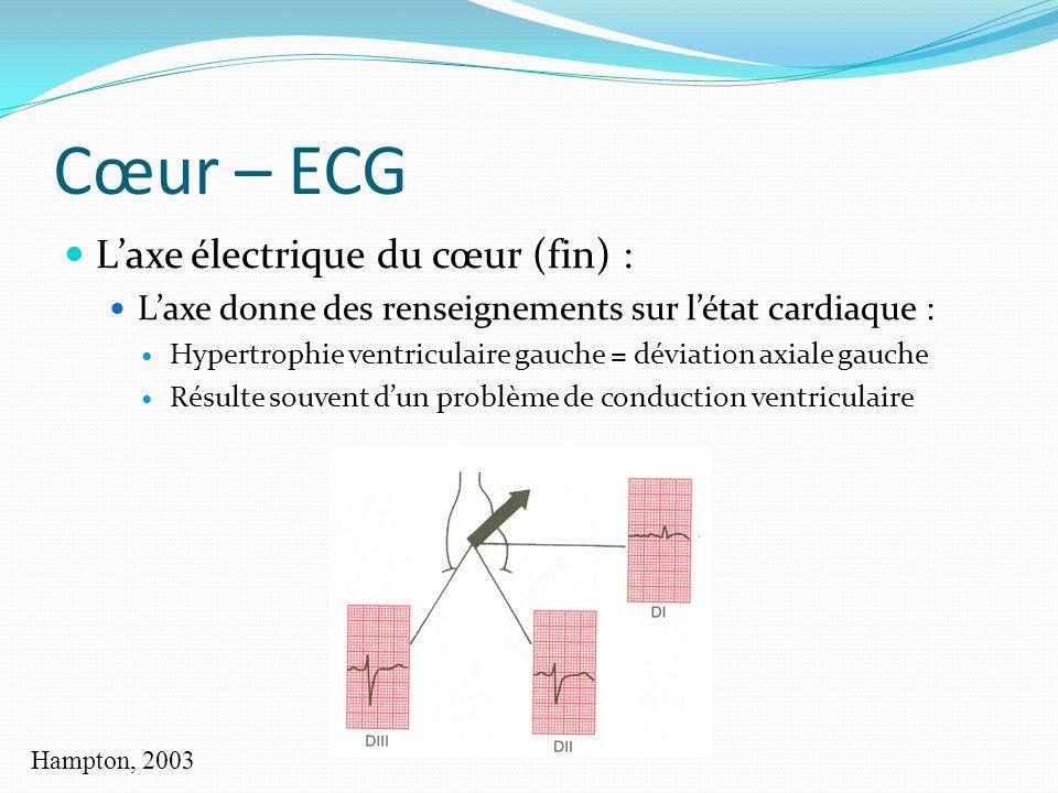 Cœur – ECG L'axe électrique du cœur (fin) :