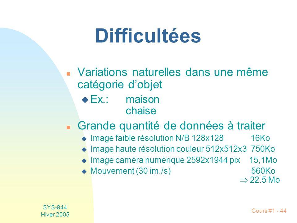 Difficultées Variations naturelles dans une même catégorie d'objet