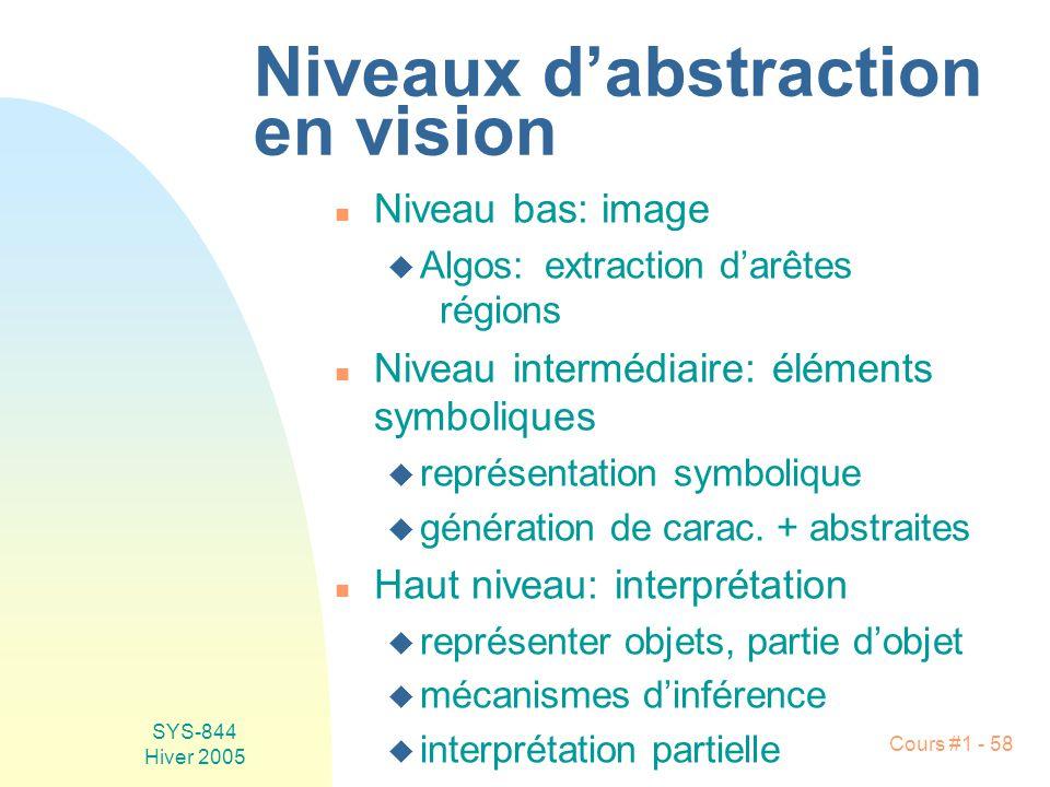 Niveaux d'abstraction en vision