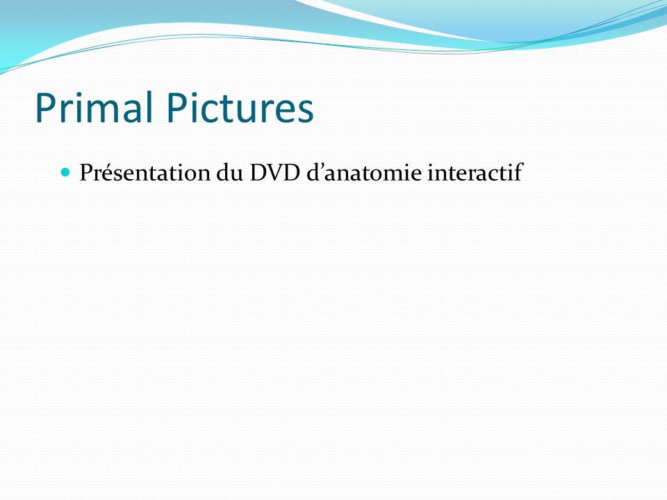 Primal Pictures Présentation du DVD d'anatomie interactif