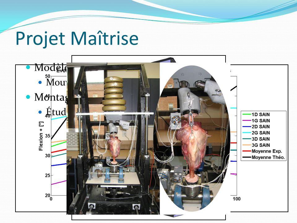 Projet Maîtrise Modèle théorique : Montage expérimental
