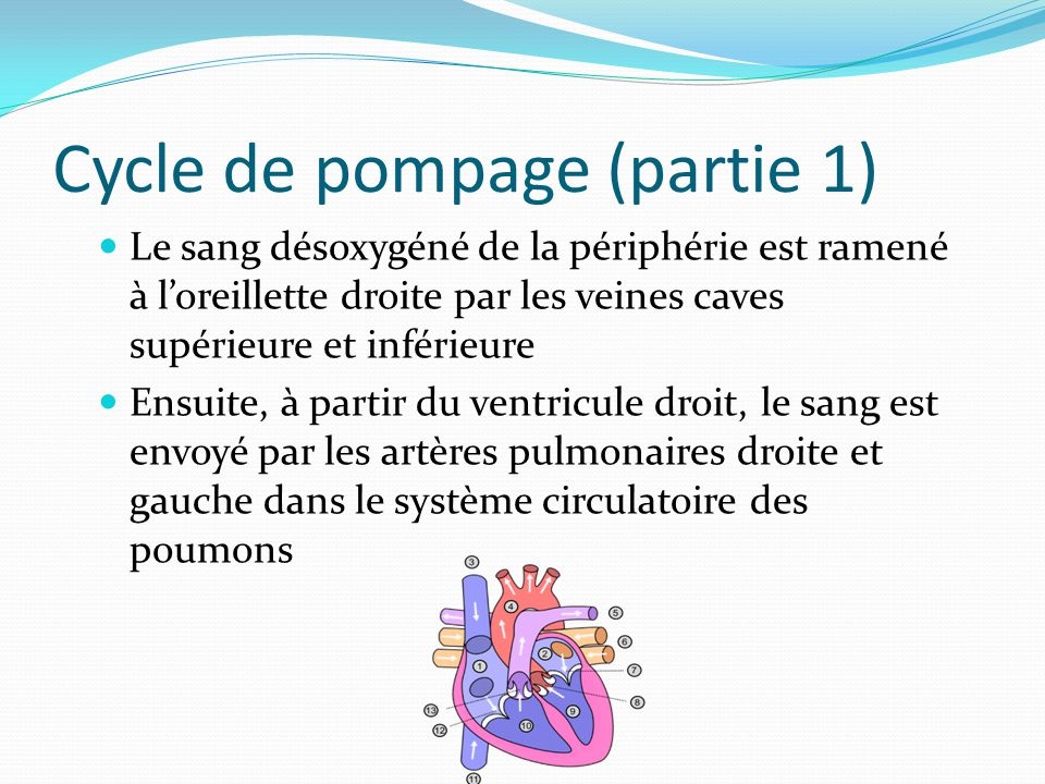 Cycle de pompage (partie 1)