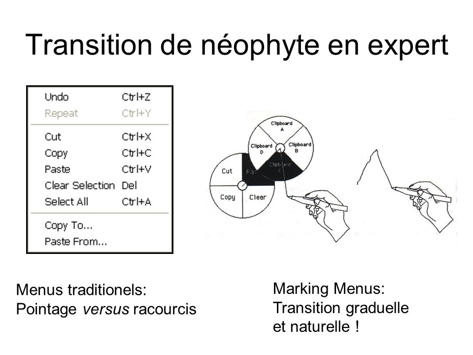 Transition de néophyte en expert