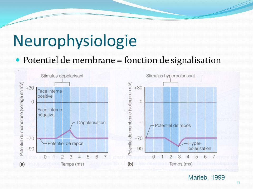 Neurophysiologie Potentiel de membrane = fonction de signalisation