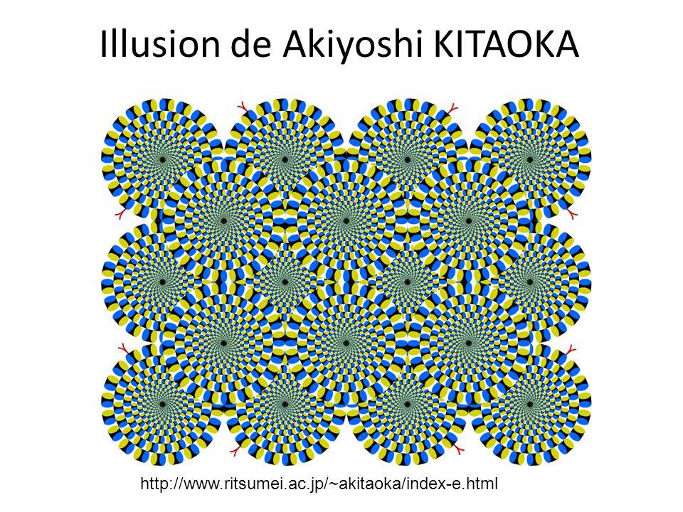 Illusion de Akiyoshi KITAOKA
