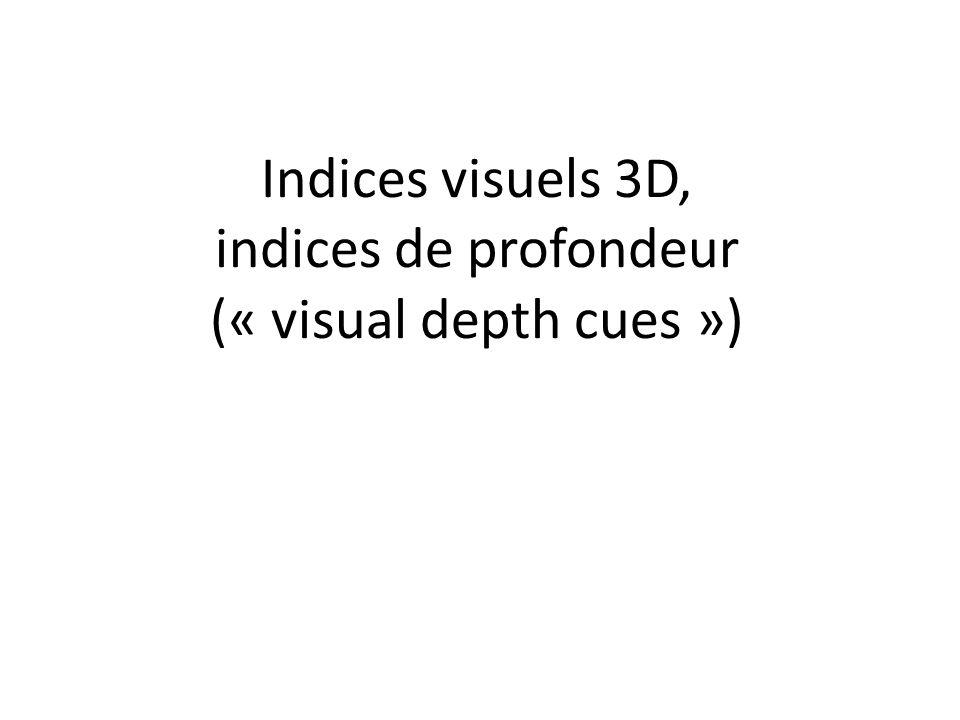 Indices visuels 3D, indices de profondeur (« visual depth cues »)