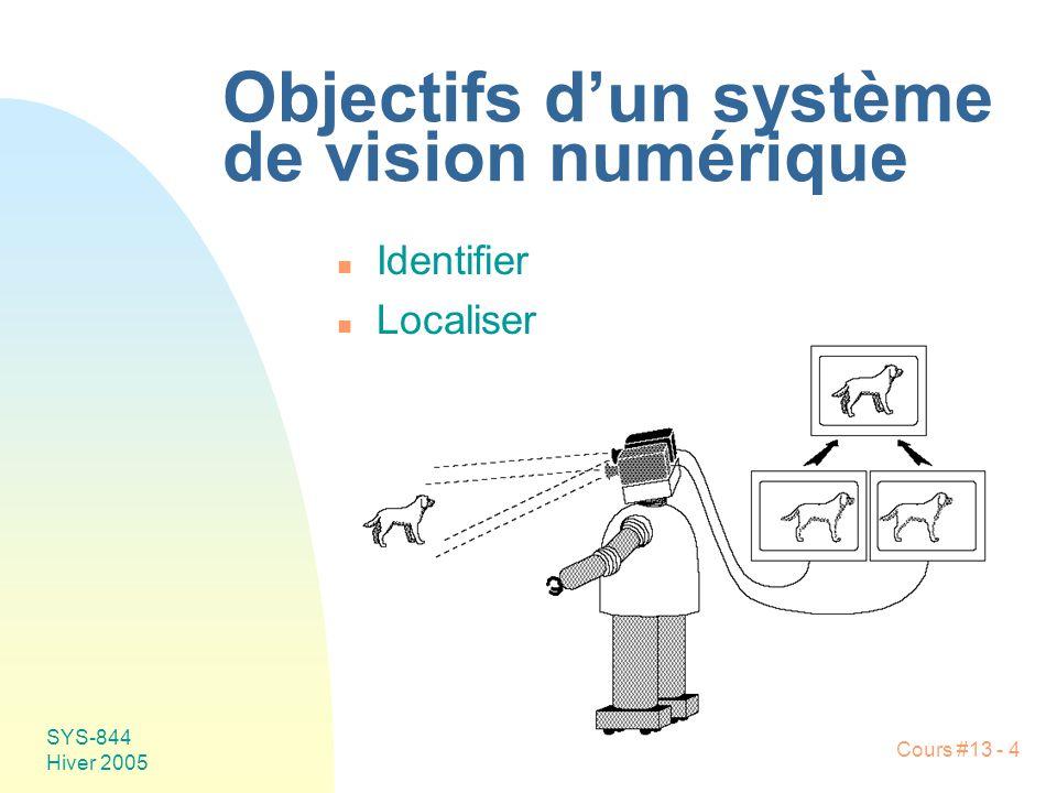 Objectifs d'un système de vision numérique