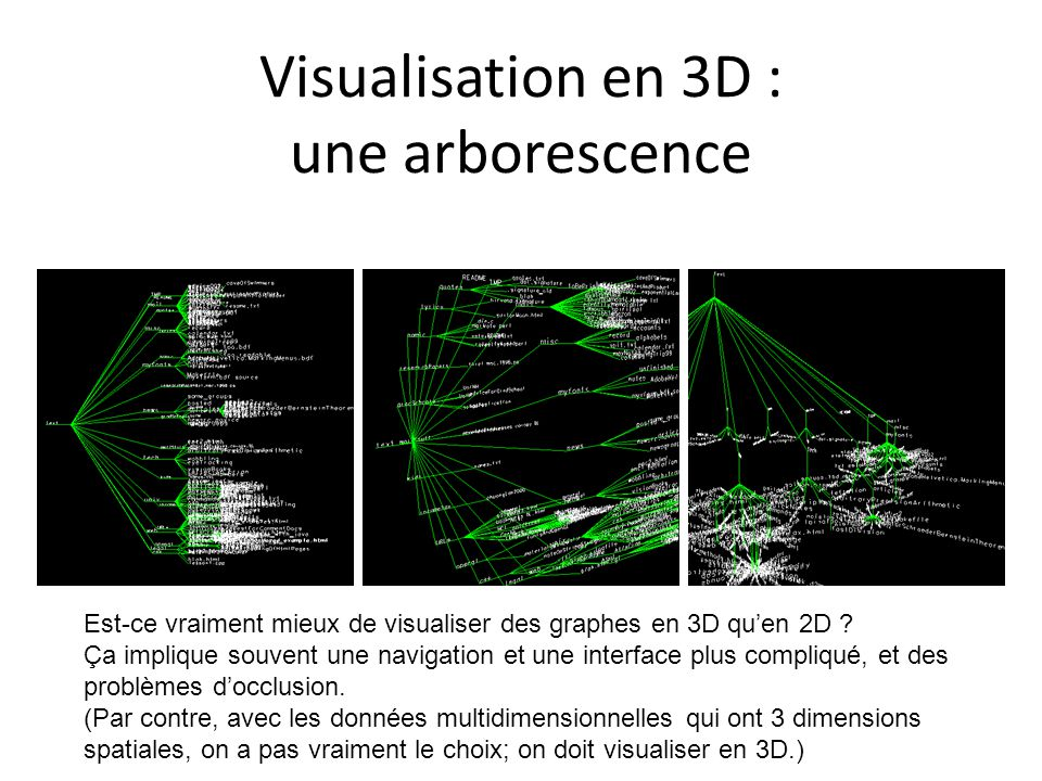 Visualisation en 3D : une arborescence