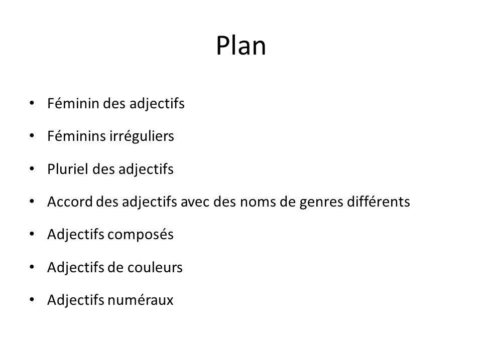 Plan Féminin des adjectifs Féminins irréguliers Pluriel des adjectifs