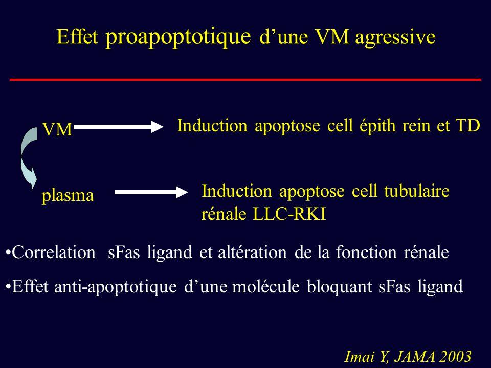 Effet proapoptotique d'une VM agressive