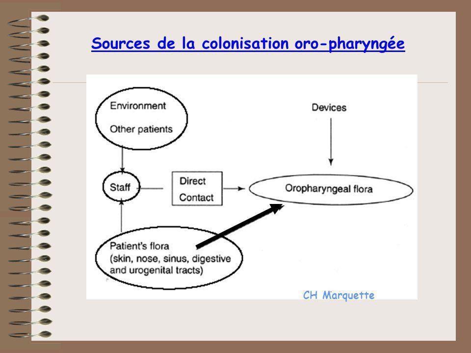 Sources de la colonisation oro-pharyngée