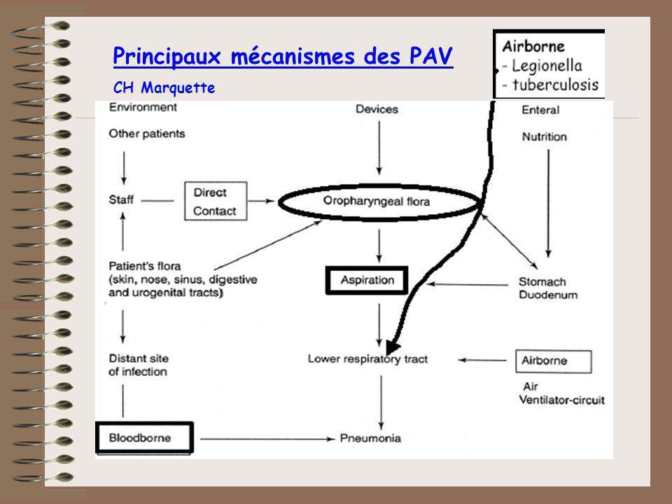 Principaux mécanismes des PAV