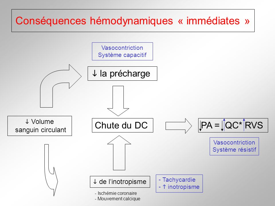 Conséquences hémodynamiques « immédiates »
