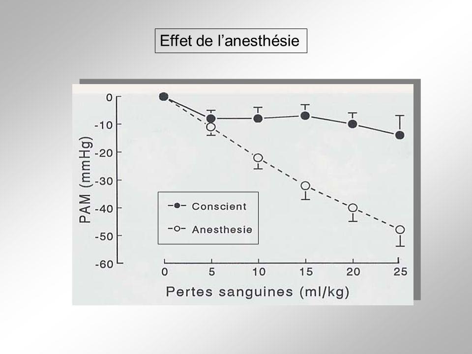 Effet de l'anesthésie