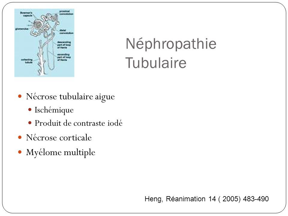 Néphropathie Tubulaire