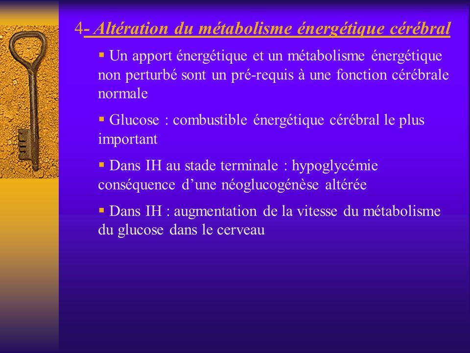 - Altération du métabolisme énergétique cérébral