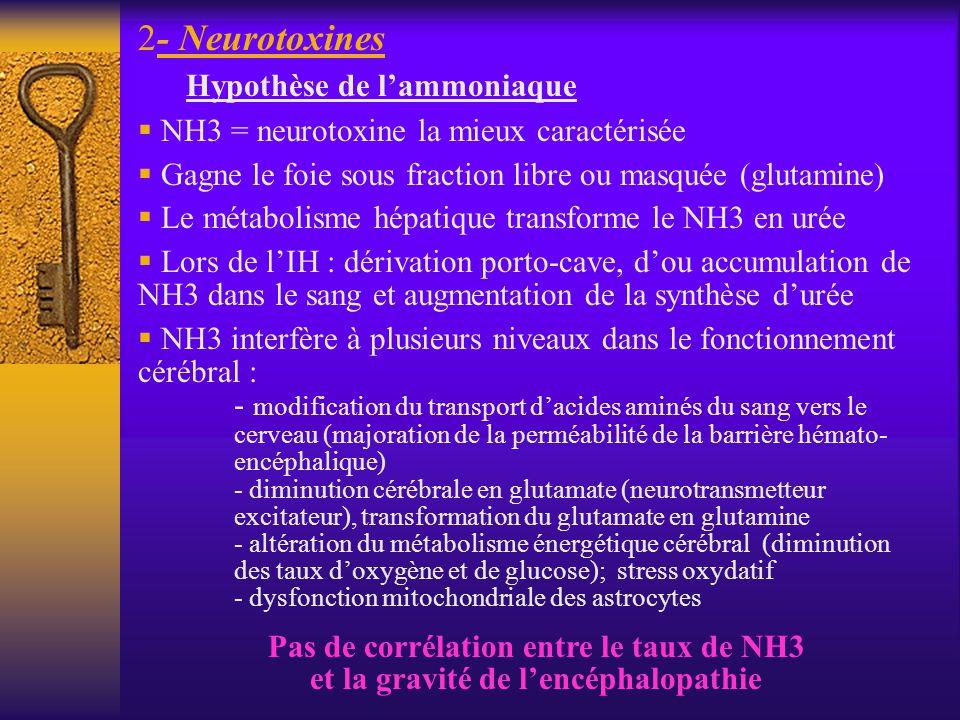 - Neurotoxines Hypothèse de l'ammoniaque