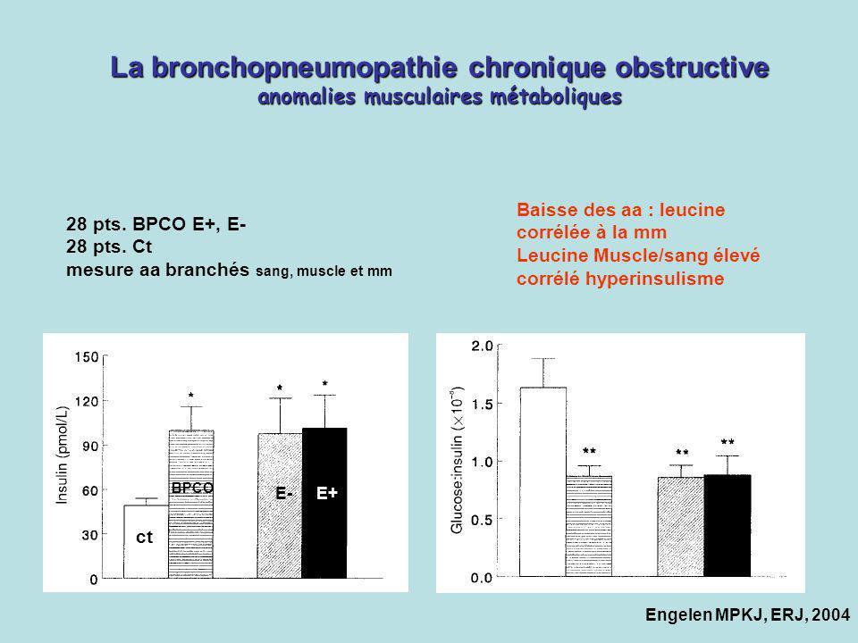 La bronchopneumopathie chronique obstructive anomalies musculaires métaboliques