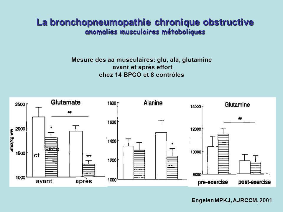 Mesure des aa musculaires: glu, ala, glutamine