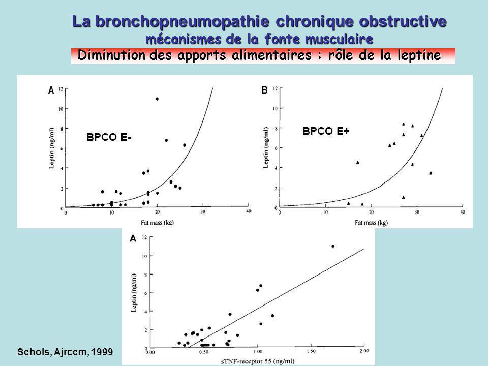La bronchopneumopathie chronique obstructive mécanismes de la fonte musculaire Diminution des apports alimentaires : rôle de la leptine