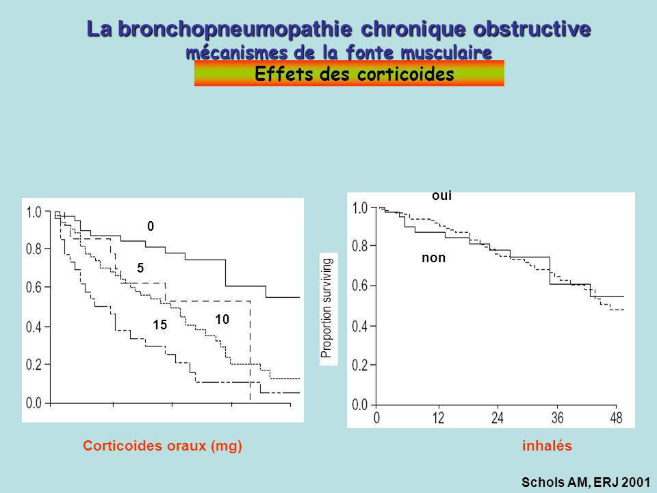 La bronchopneumopathie chronique obstructive mécanismes de la fonte musculaire Effets des corticoides