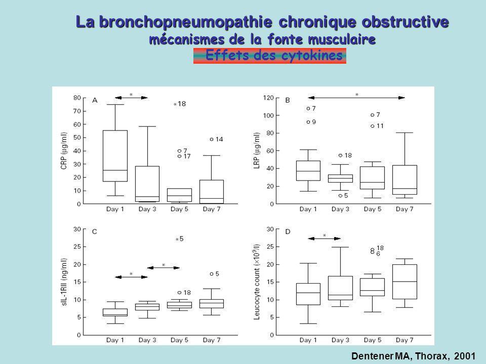 La bronchopneumopathie chronique obstructive mécanismes de la fonte musculaire Effets des cytokines