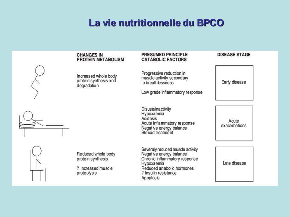 La vie nutritionnelle du BPCO
