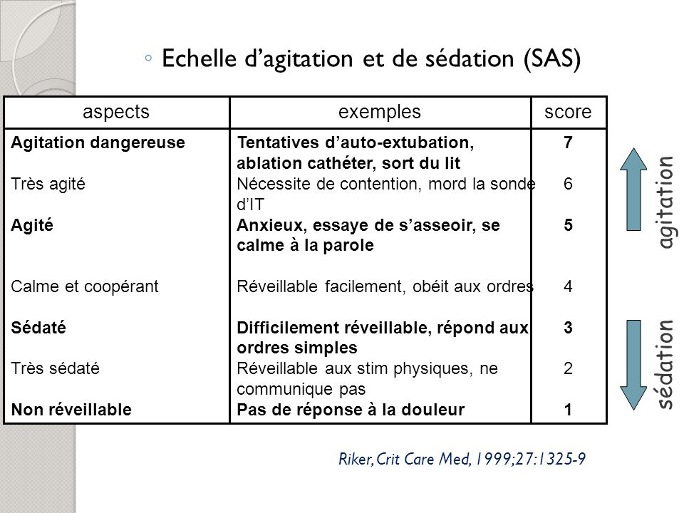 Echelle d'agitation et de sédation (SAS)