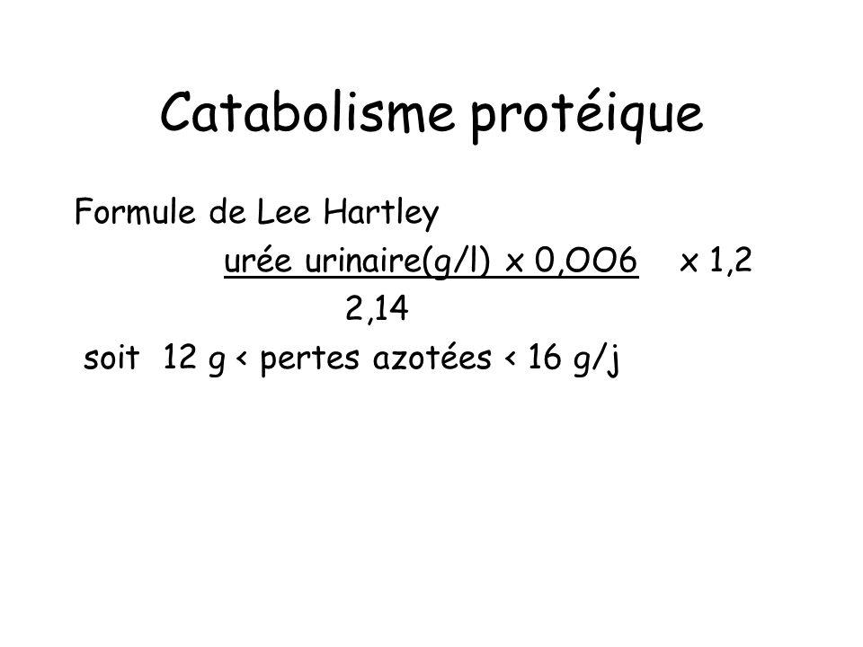 Catabolisme protéique