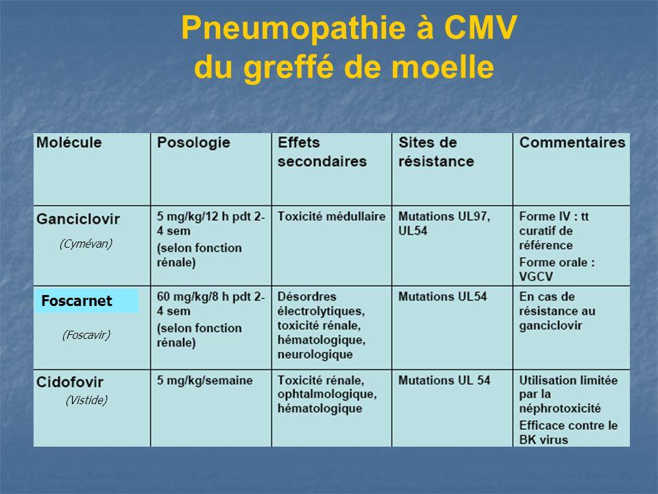 Pneumopathie à CMV du greffé de moelle