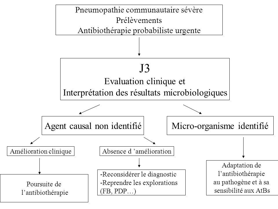 J3 Evaluation clinique et