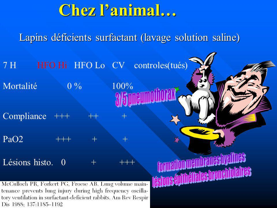 Chez l'animal… Lapins déficients surfactant (lavage solution saline)