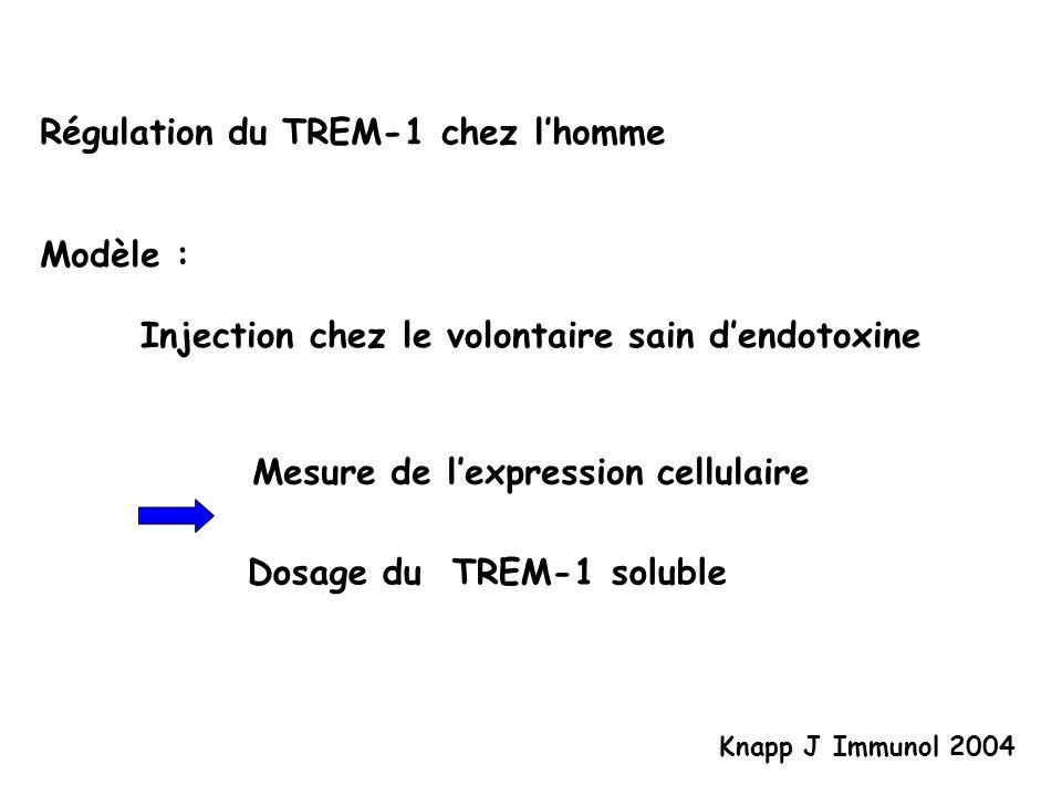 Régulation du TREM-1 chez l'homme