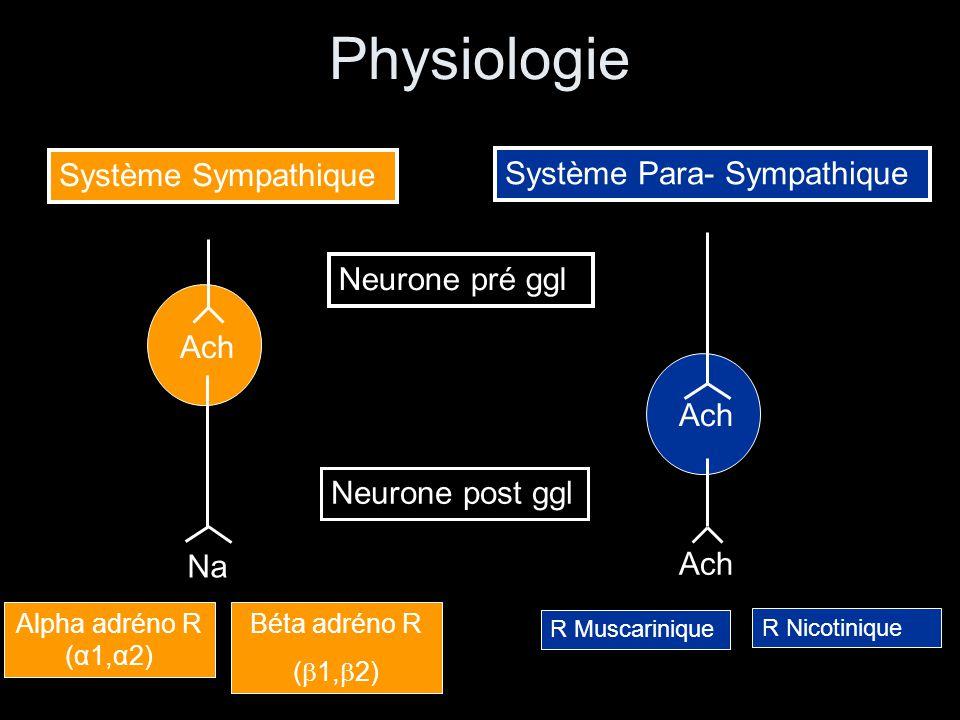 Physiologie Système Sympathique Système Para- Sympathique