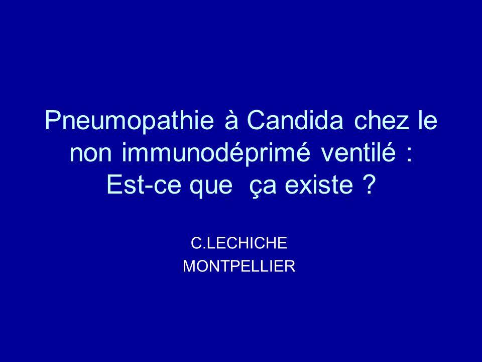 C.LECHICHE MONTPELLIER