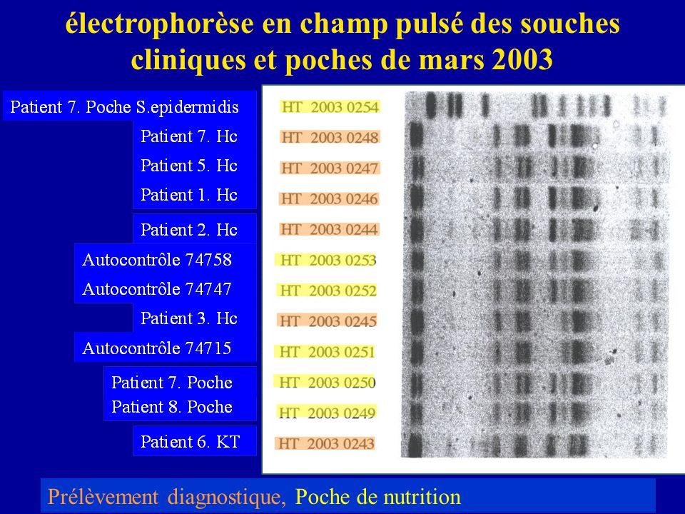 électrophorèse en champ pulsé des souches cliniques et poches de mars 2003