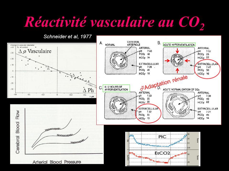 Réactivité vasculaire au CO2